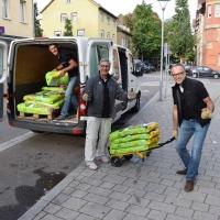 tradition-ES Hochbeet Pliensauvorstadt Vorbereitung