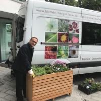 Hochbeet-bepflanzt