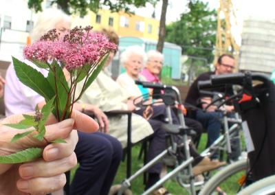 Soziales Projekt: Mit einer Seniorengruppe einen Tagesausflug in die Wilhelma machen